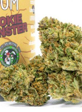 Cookie Monster Cannabis Light particolare