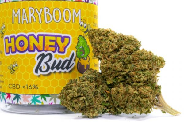 HoneyBud Cannabis Light particolare