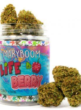 LifeBerry Cannabis Light